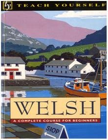teach yourself welsh 1992