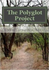 the polyglot project how to learn multiple languages